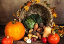 Przechowywanie warzyw w magazynach i w transporcie